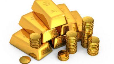 گرد همایی بازرسین طلا